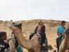 Aswan_(7)