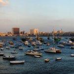 Alexandria_panorama